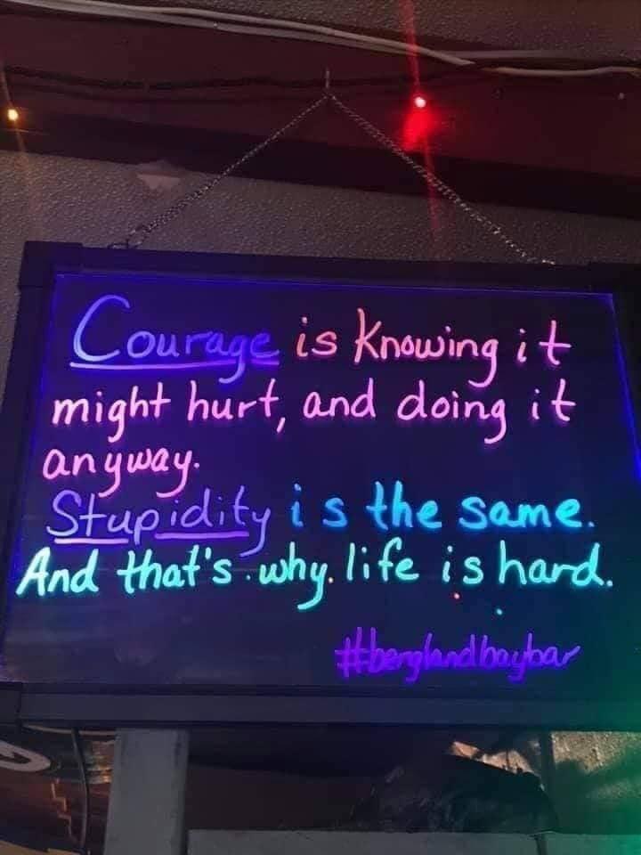 courage-Stupidity.jpg